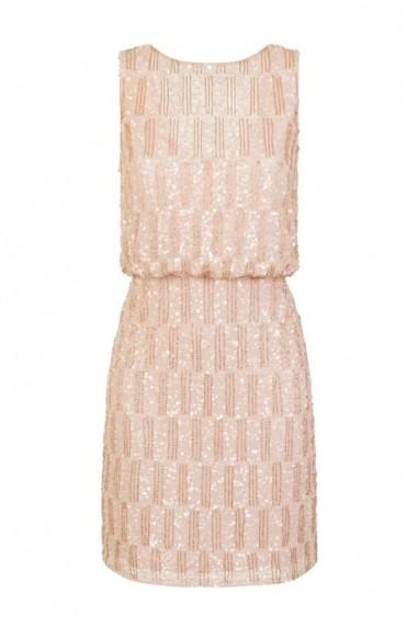 Lace & Beads Saorise Nude Dress