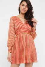 TNFC Lily Orange Mini Dress
