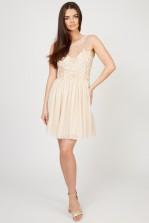 Lace & Beads Blare Nude Embellished Dress