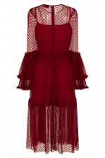 Lace & Beads Raven Burgundy Sheer Dress