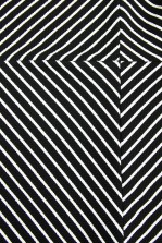 TFNC Jella Stripe Crop Top
