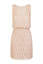 Lace & Beads Saorise Nude Dress