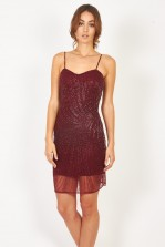 Lace & Beads Milly Wine Embellished Dress