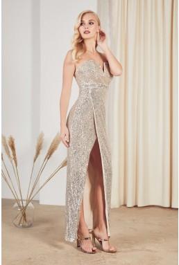 TFNC Gannia Nude Silver Maxi Dress
