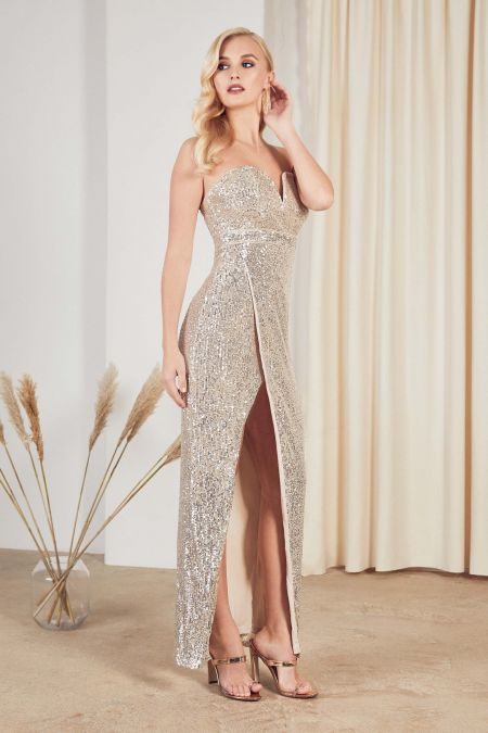 TFNC Gannia Nude Silver Maxi Dress